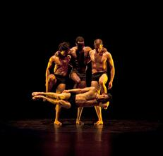 Still Moving Pilobolus at Forty.jpg